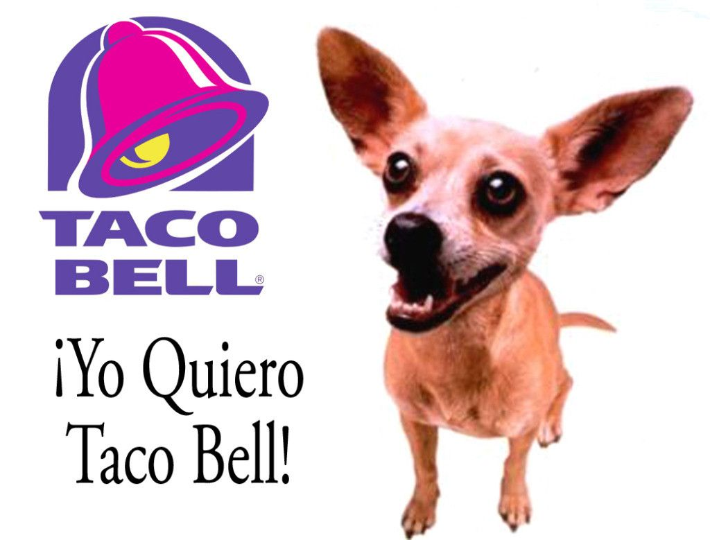 Image result for taco bell chihuahua