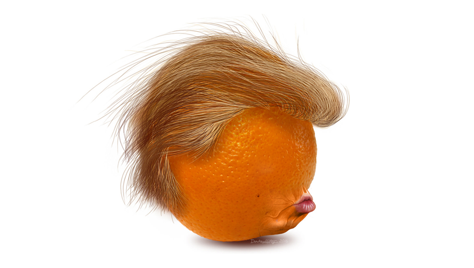 Image result for orange trump